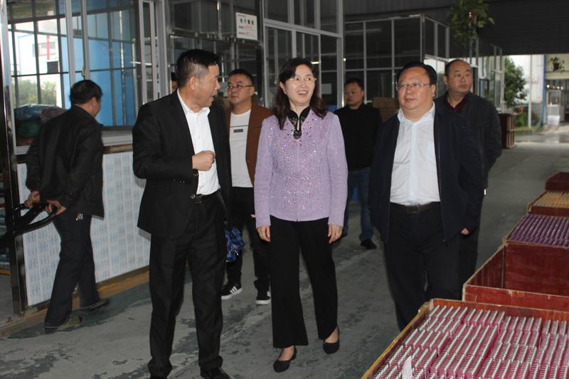 刘艳阳赴联系服务企业开展走访调研