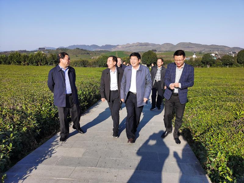 忻州市人大常委会党组副书记、副主任魏广才来铜考察